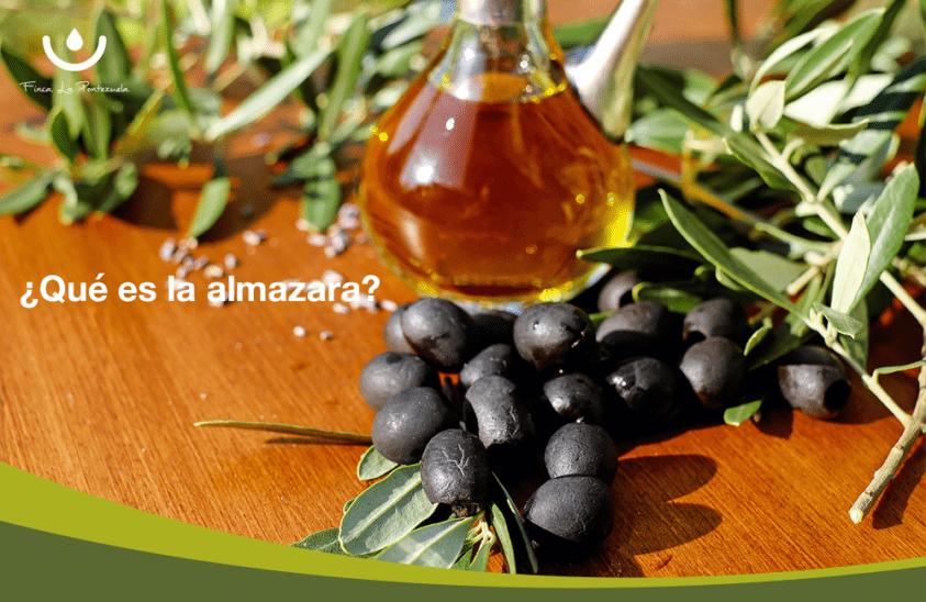 Aceite de oliva y aceitunas negras