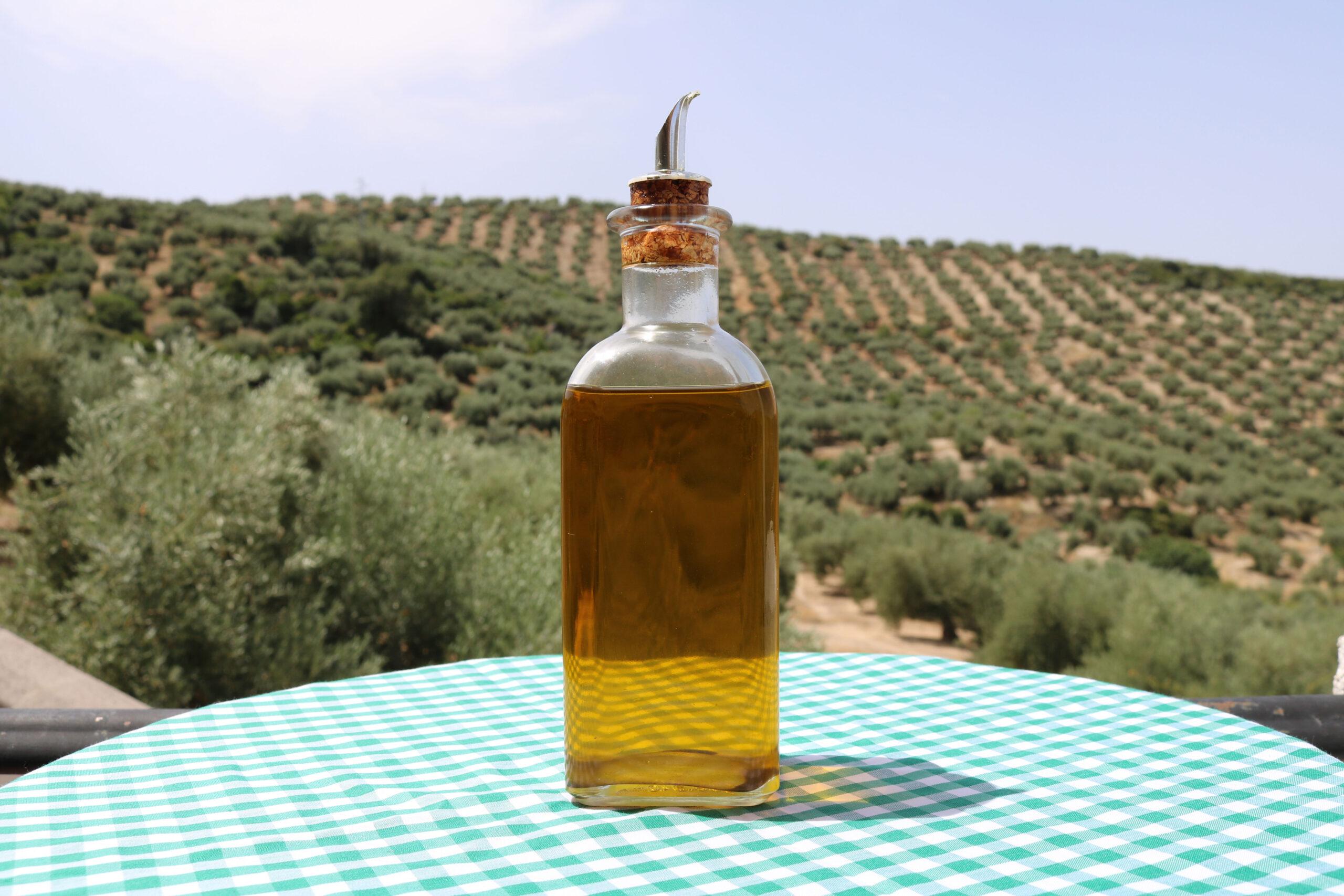 descubre los mejores aceites de oliva virgen extra gourmet y disfruta del AOVE
